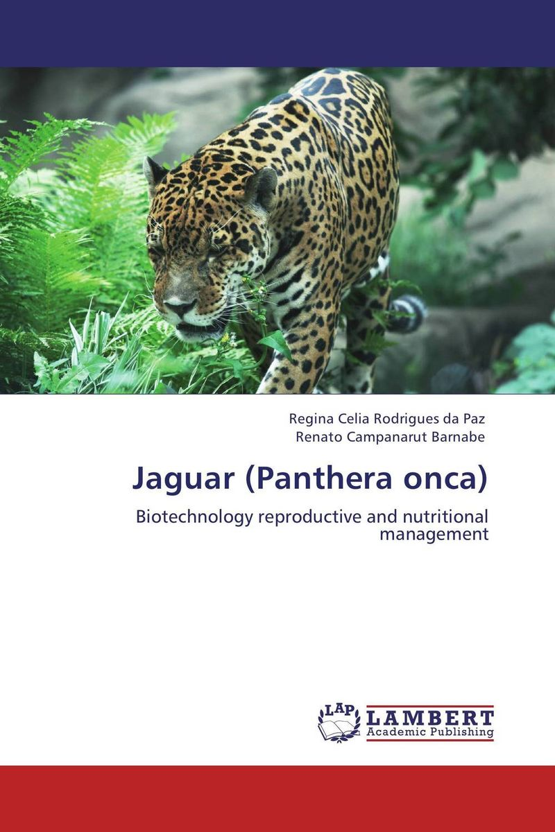 Jaguar (Panthera onca) tigers of the world second edition the science politics and conservation of panthera tigris noyes series in animal behavior ecology conservation and management