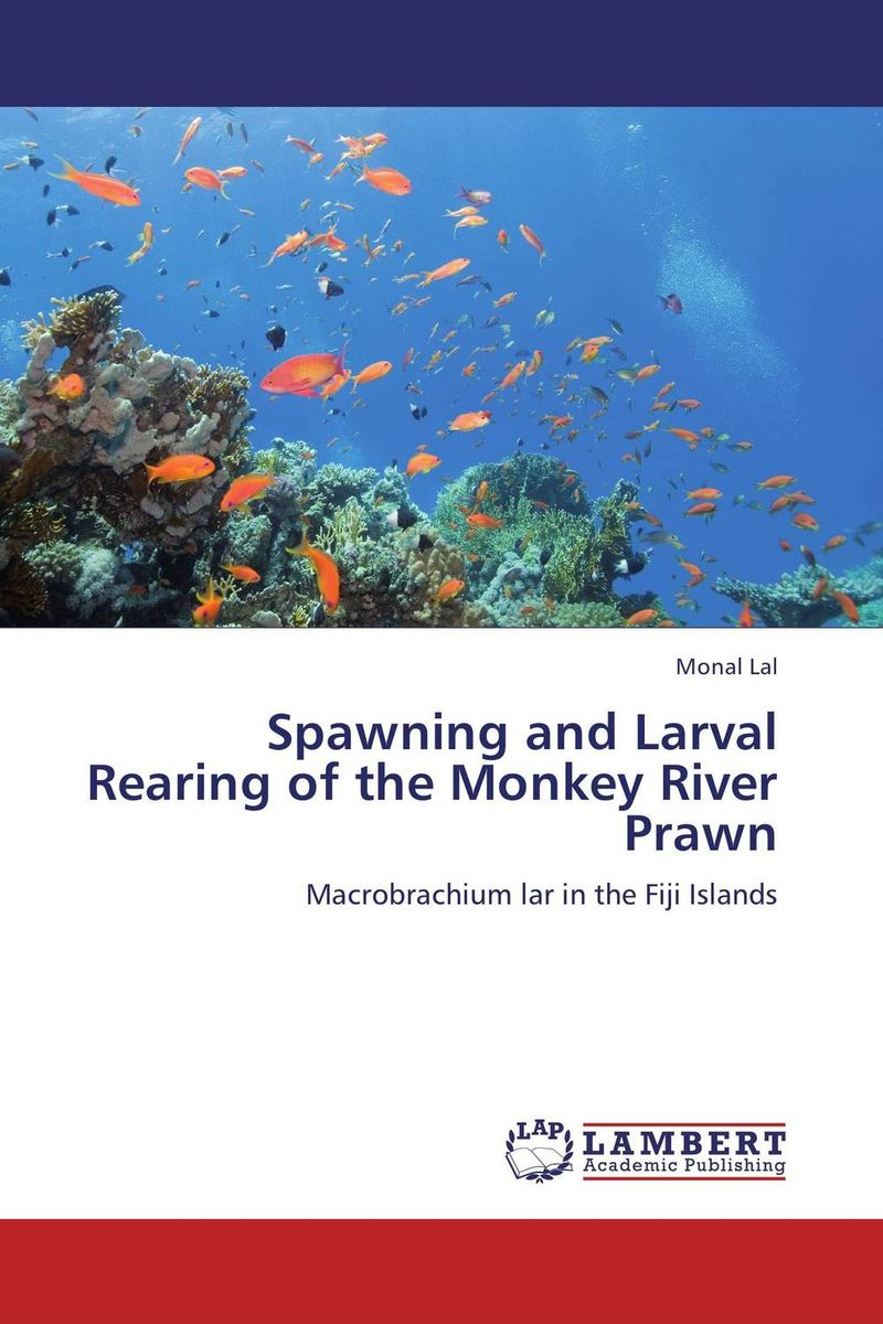 Spawning and Larval   Rearing of the Monkey River Prawn tales of monkey island глава 5 явление пиратского бога