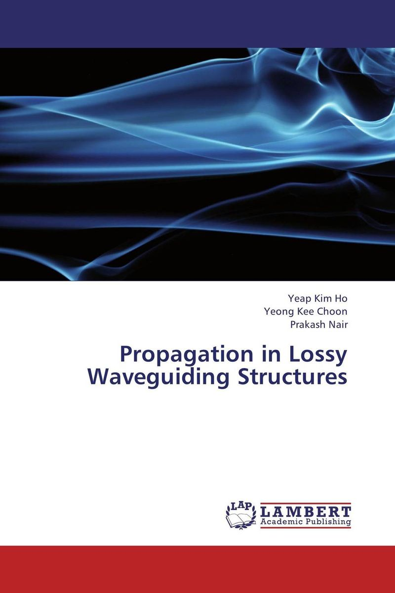 Propagation in Lossy Waveguiding Structures found in brooklyn