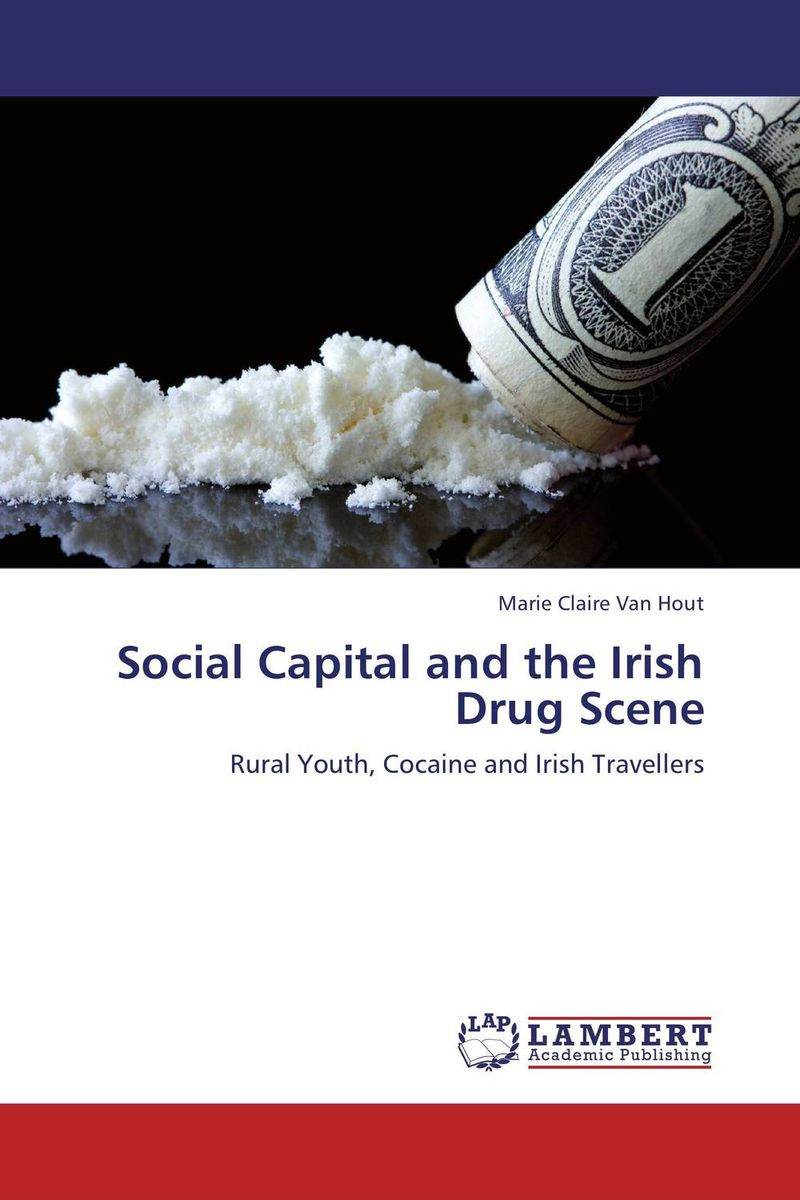 Social Capital and the Irish Drug Scene capital structure and risk dynamics among banks