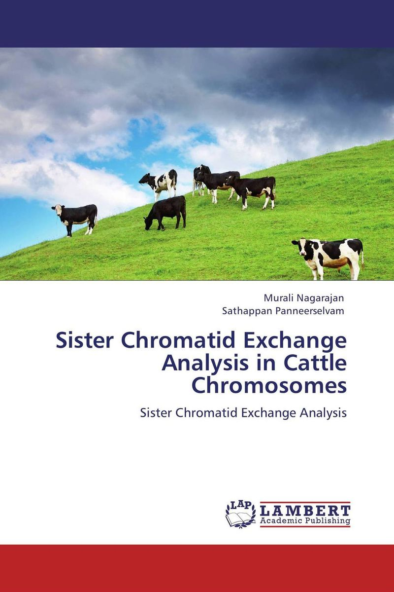 Sister Chromatid Exchange Analysis in Cattle Chromosomes therapeutic management of infertility in cattle
