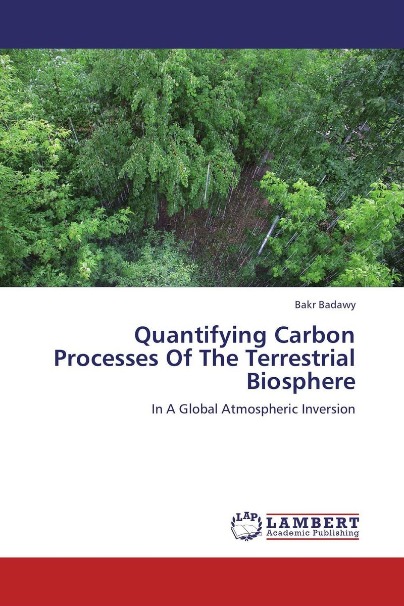 Quantifying Carbon Processes Of The Terrestrial Biosphere different ways to organize the processes of financial administration