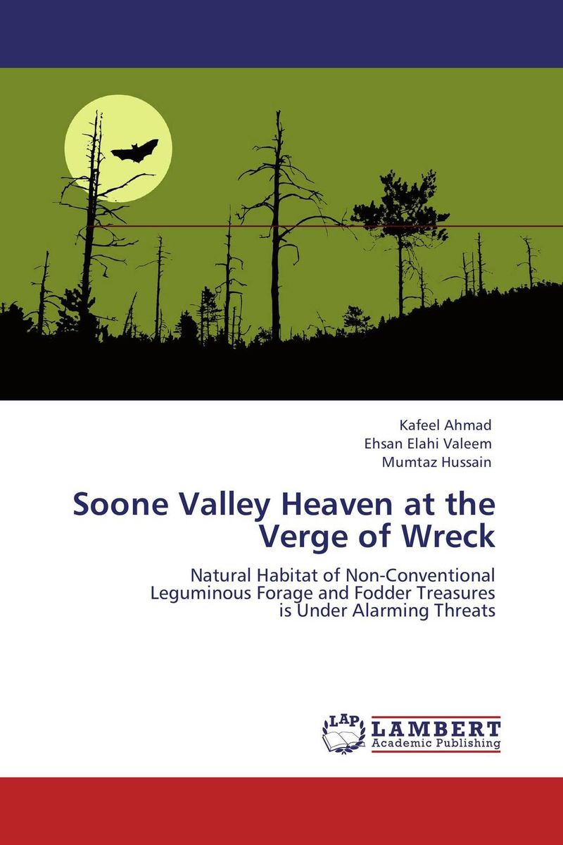 Soone Valley Heaven at the Verge of Wreck suleman dangor shaykh yusuf of macassar