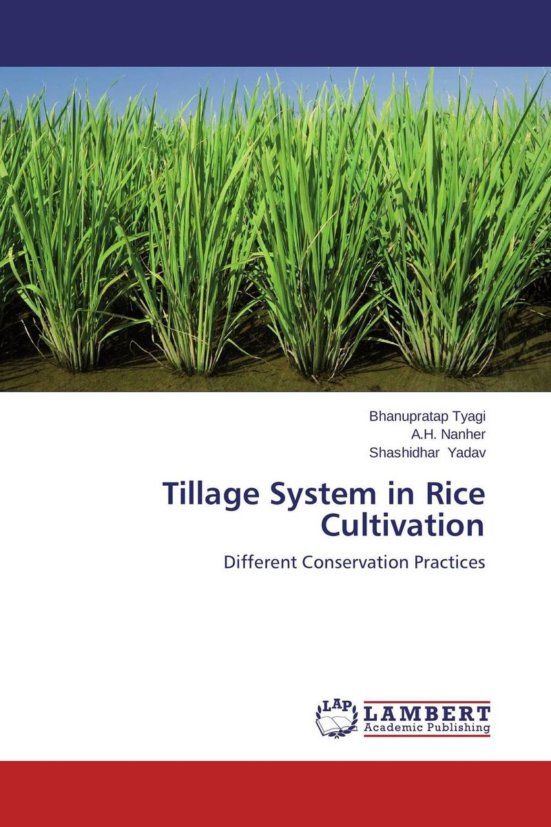 Tillage System in Rice Cultivation zero tillage technology in rice wheat cropping system of pakistan