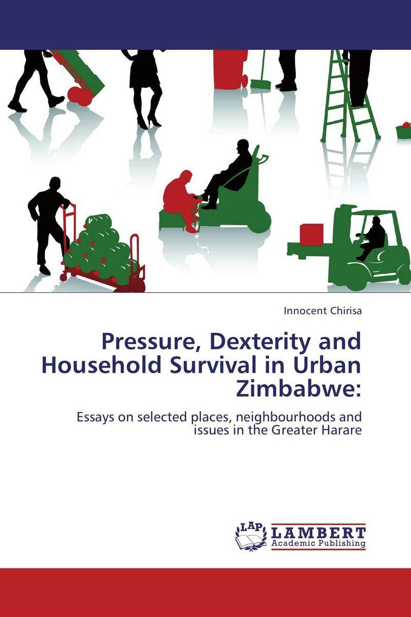 Pressure, Dexterity and Household Survival in Urban Zimbabwe: queen of babble in the big city