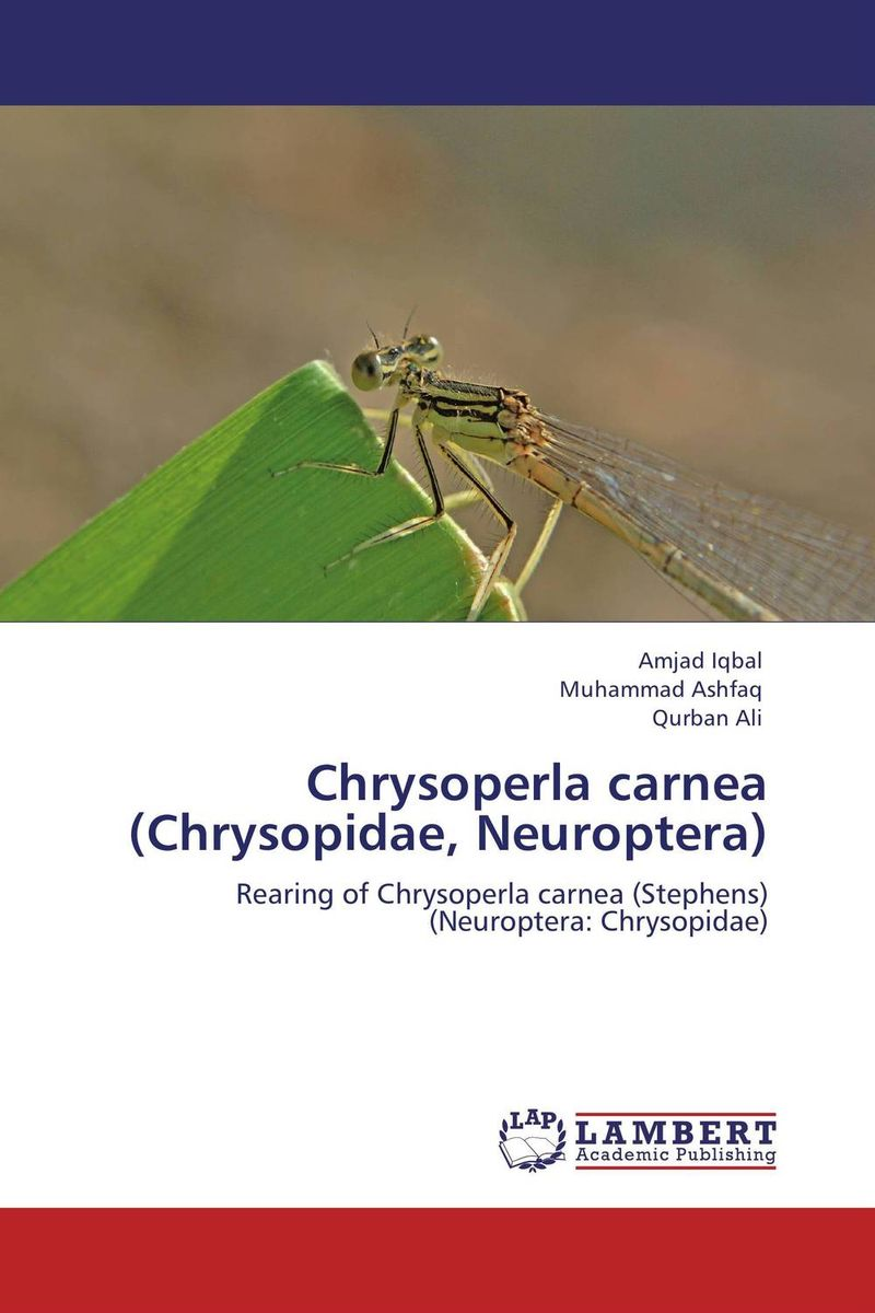 Chrysoperla carnea (Chrysopidae, Neuroptera) secret weapons – defenses of insects spiders scorpions and other many–legged creatures