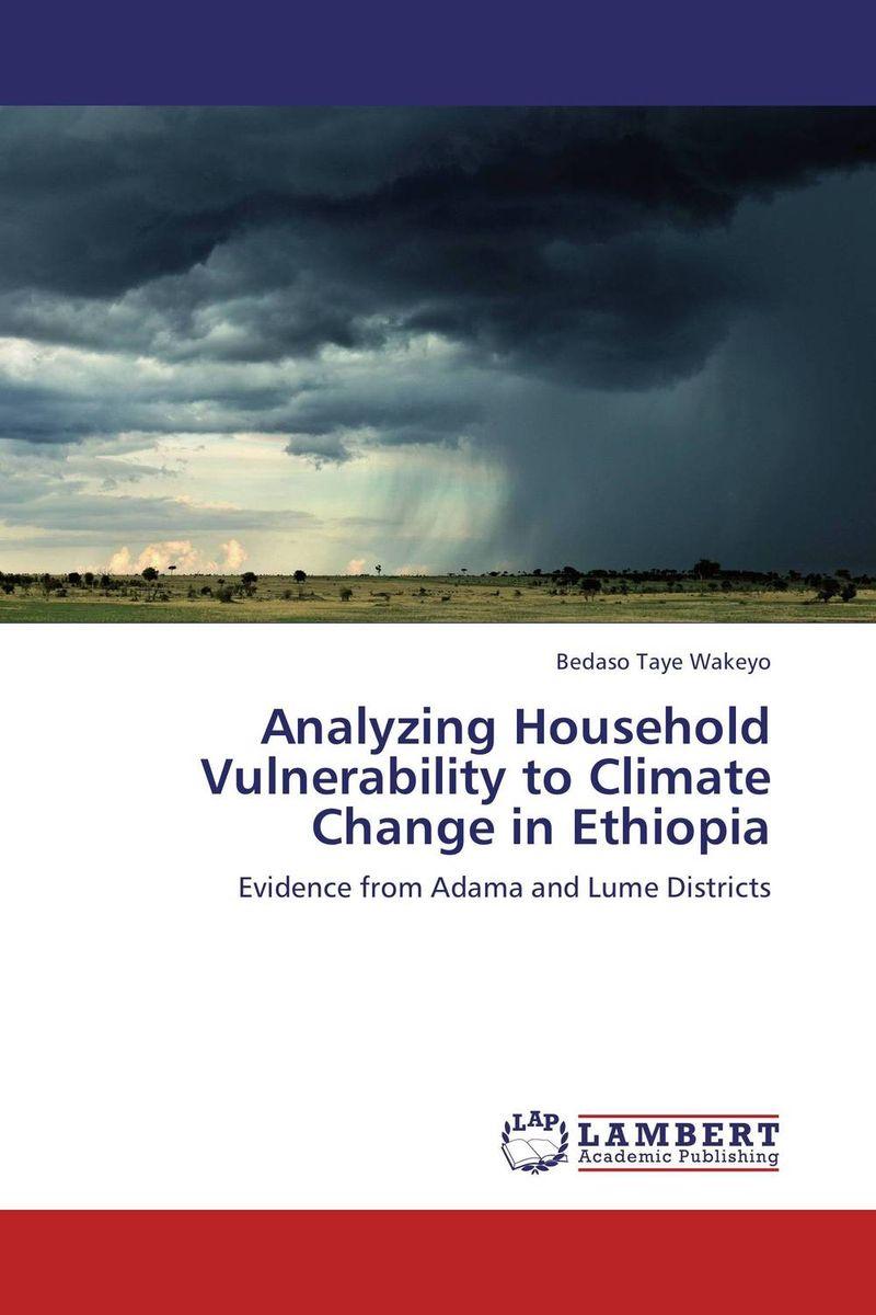 купить Analyzing Household Vulnerability to Climate Change in Ethiopia недорого