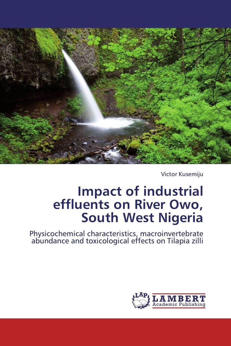 Impact of industrial effluents on River Owo, South West Nigeria highsmith p found in the street