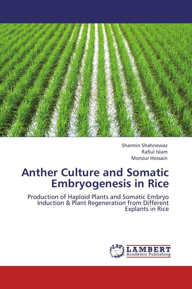 Anther Culture and Somatic Embryogenesis in Rice somatic hybridization as a primary cause of malignization