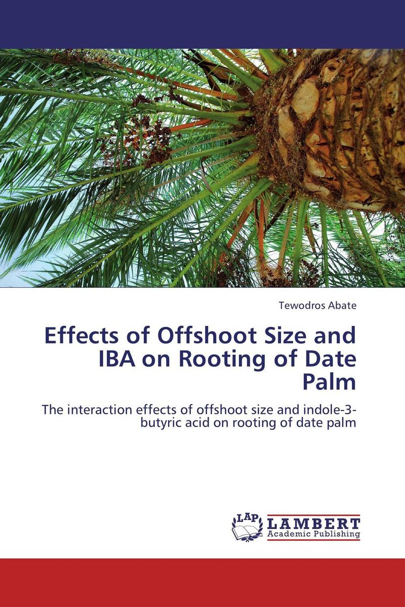Effects of Offshoot Size and IBA on Rooting of Date Palm date palm and date lore of bengal