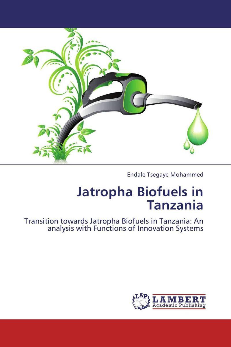 Jatropha Biofuels in Tanzania rik degunther alternative energy for dummies