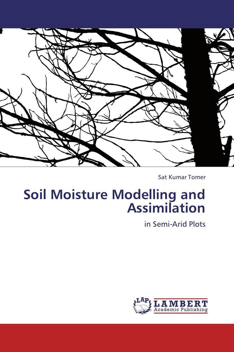 Soil Moisture Modelling and Assimilation недорго, оригинальная цена