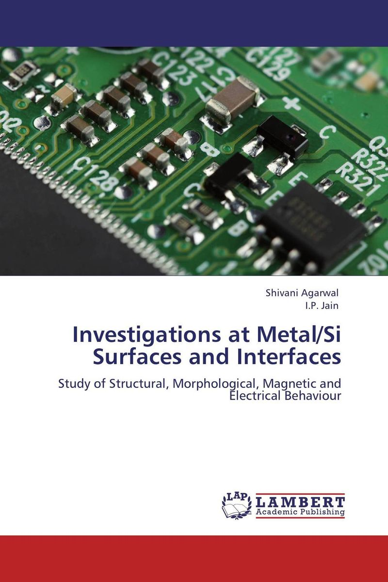 Investigations at Metal/Si Surfaces and Interfaces ligia gheorghita passivation kinetics at semiconductor interfaces