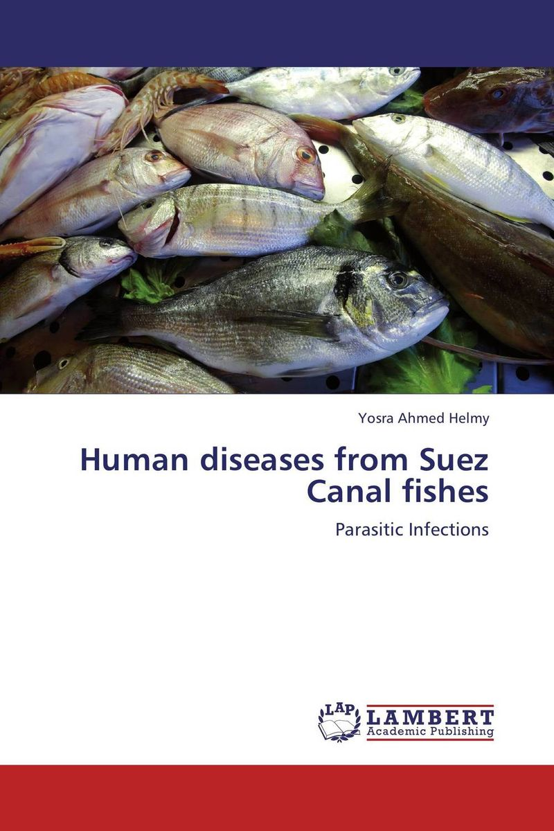 Human diseases from Suez Canal fishes the teeth with root canal students to practice root canal preparation and filling actually