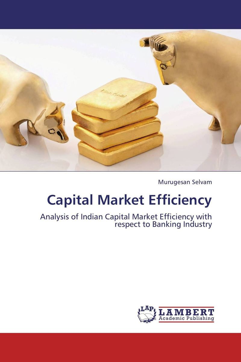 Capital Market Efficiency capital market imperfections and corporate investment behaviour