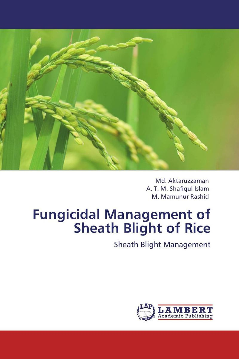 Fungicidal Management of Sheath Blight of Rice k r k naidu a v ramana and r veeraraghavaiah common vetch management in rice fallow blackgram