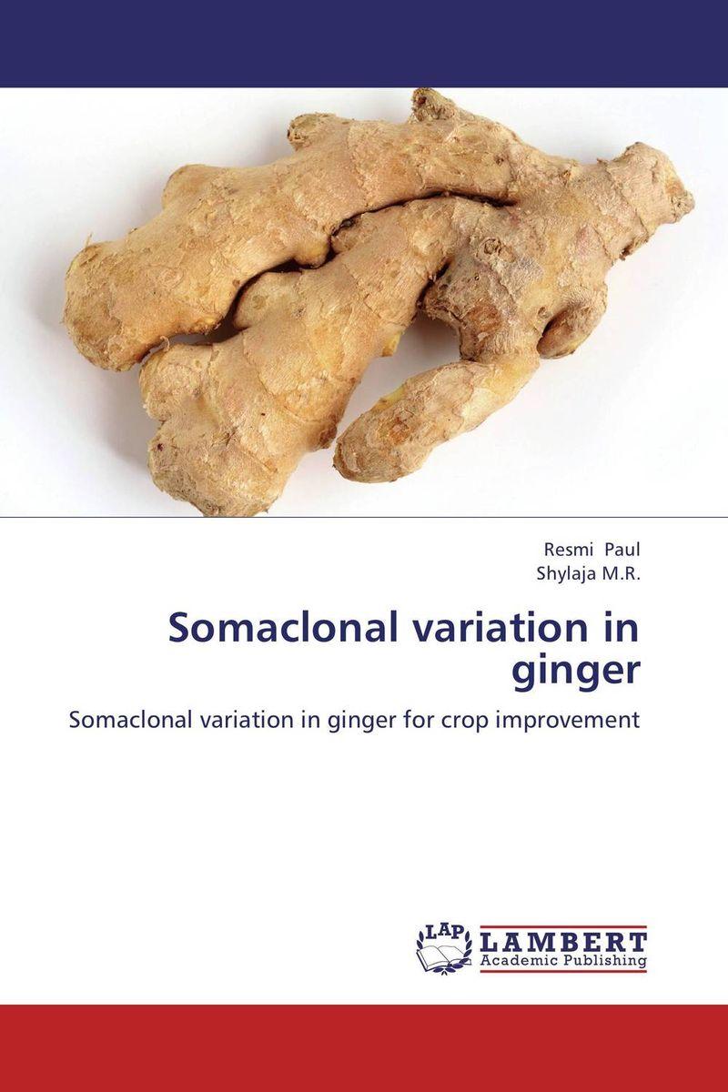 Somaclonal variation in ginger