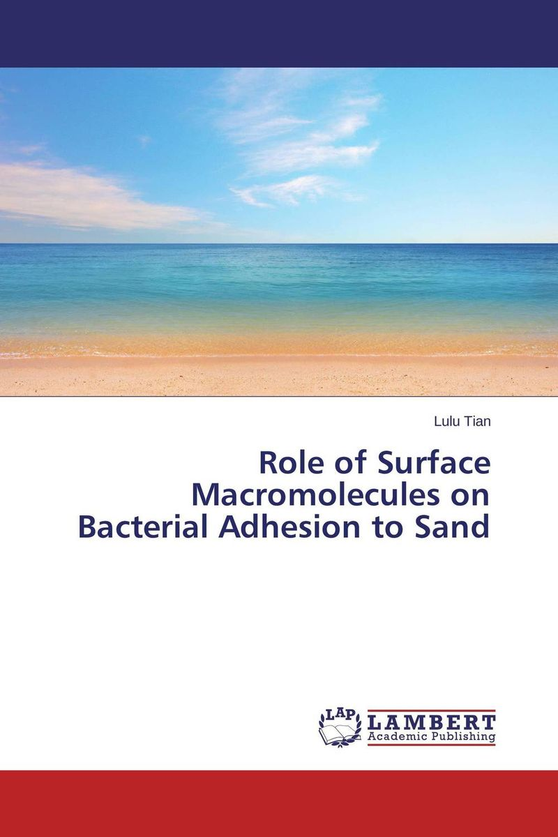 Role of Surface Macromolecules on Bacterial Adhesion to Sand analysis of bacterial colonization on gypsum casts