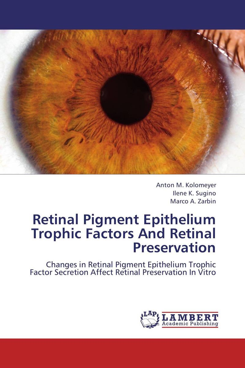 Retinal Pigment Epithelium Trophic Factors And Retinal Preservation ilaria piano and claudia gargini antiapoptotic strategies in retinal degeneration