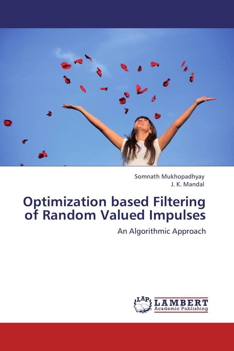 Optimization based Filtering of Random Valued Impulses clustering and optimization based image segmentation techniques