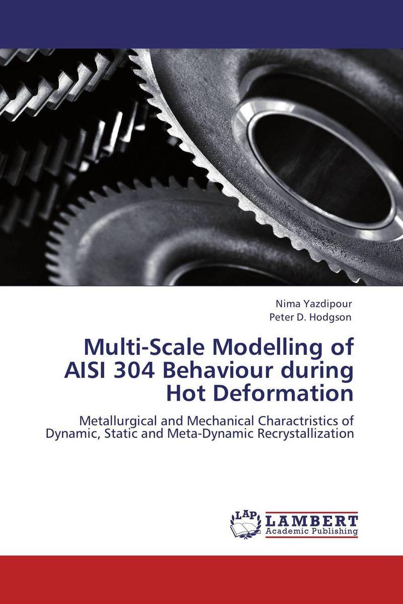где купить Multi-Scale Modelling of AISI 304 Behaviour during Hot Deformation по лучшей цене