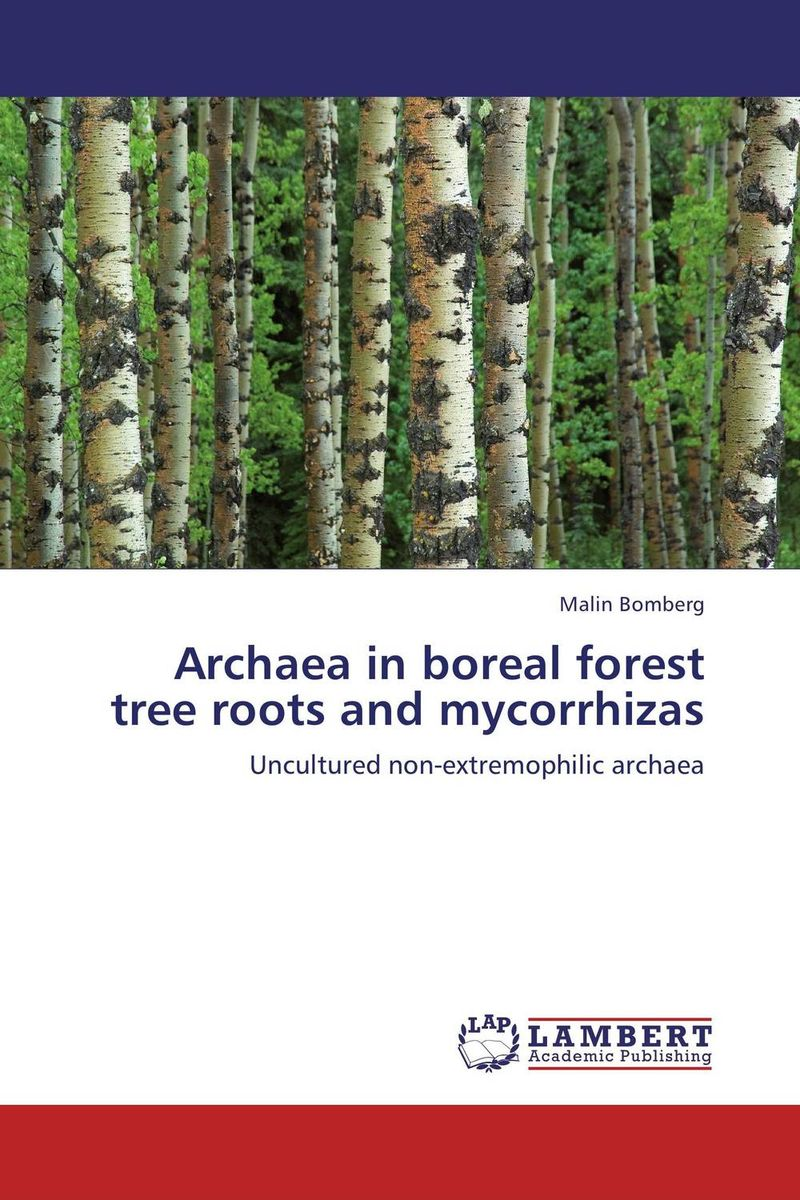 Archaea in boreal forest tree roots and mycorrhizas found in brooklyn