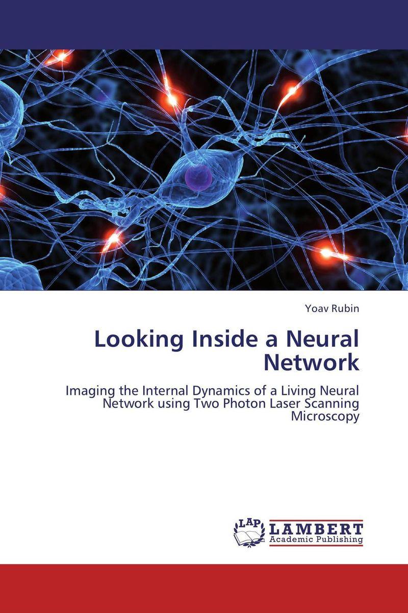 Looking Inside a Neural Network looking inside