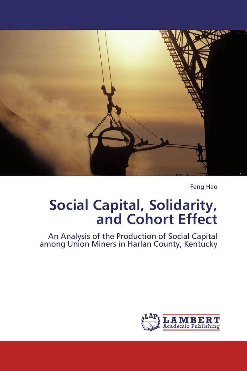 Social Capital, Solidarity, and Cohort Effect social capital