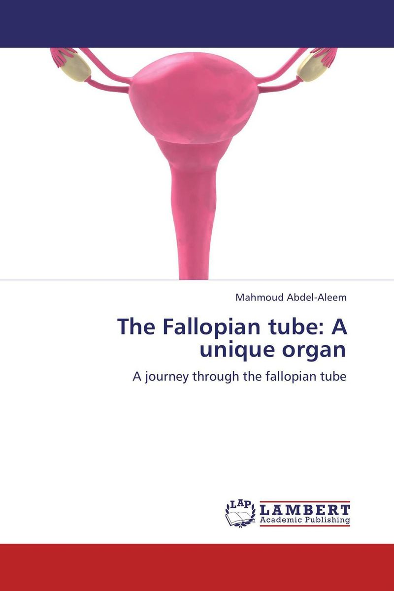 The Fallopian tube: A unique organ clinical pathway for postoperative organ transplants