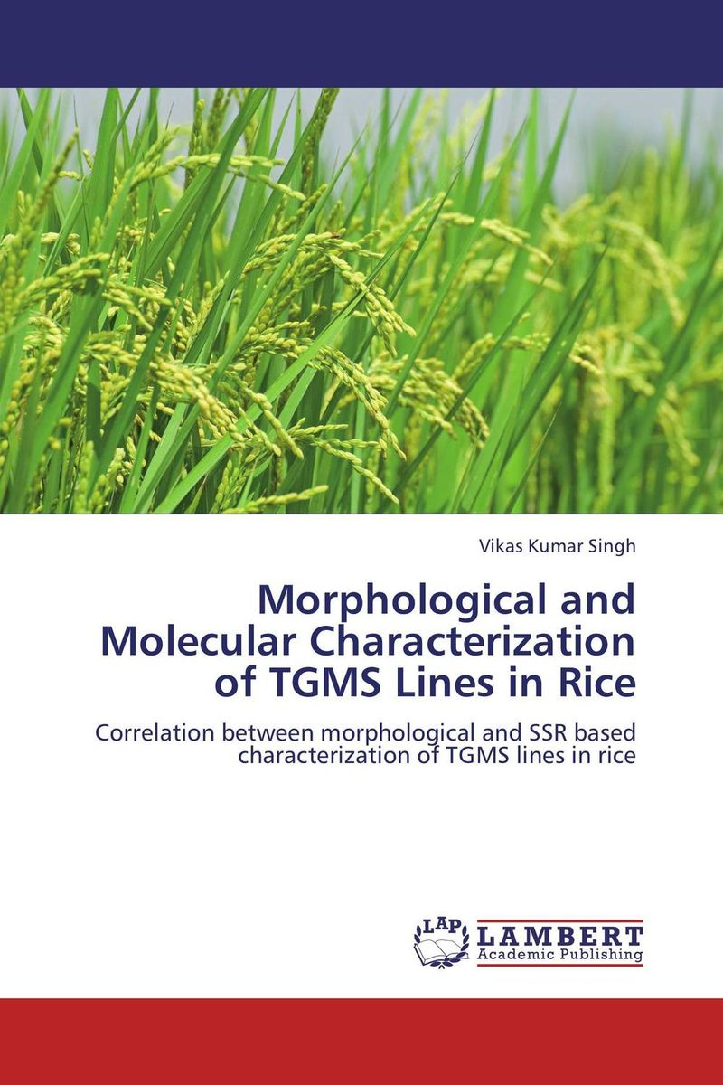 Morphological and Molecular Characterization of TGMS Lines in Rice jyoti yadav arvind kumar and lalit kumar molecular characterization of lactamase e coli and klebsiella spp