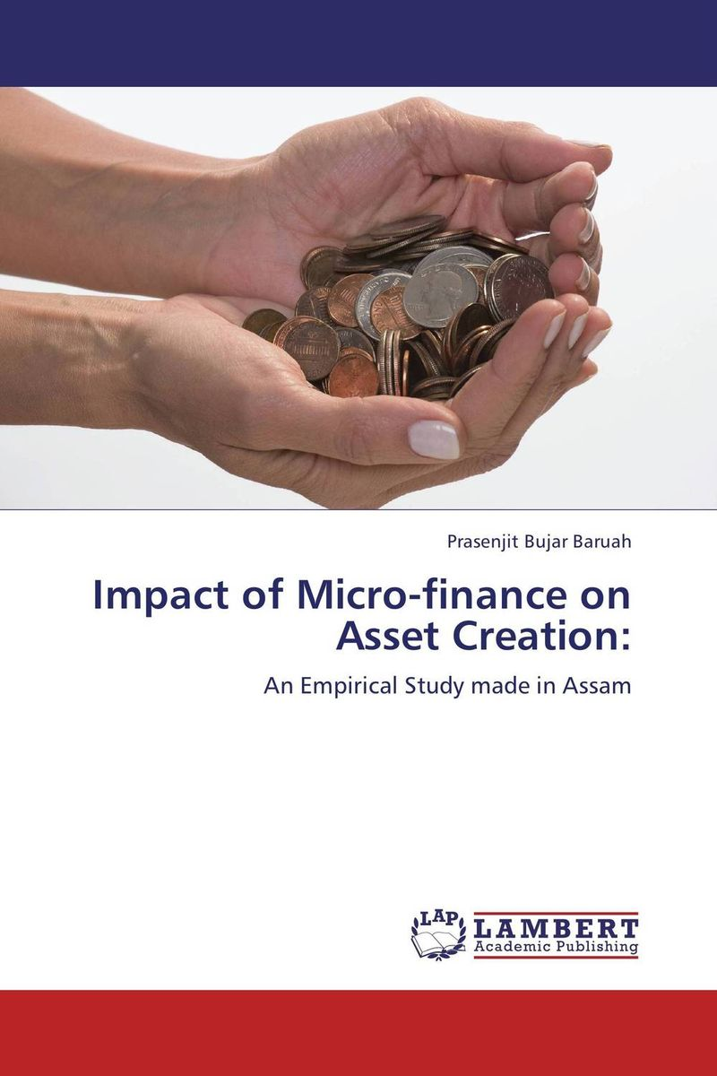Impact of Micro-finance on Asset Creation: barbara weber infrastructure as an asset class investment strategies project finance and ppp