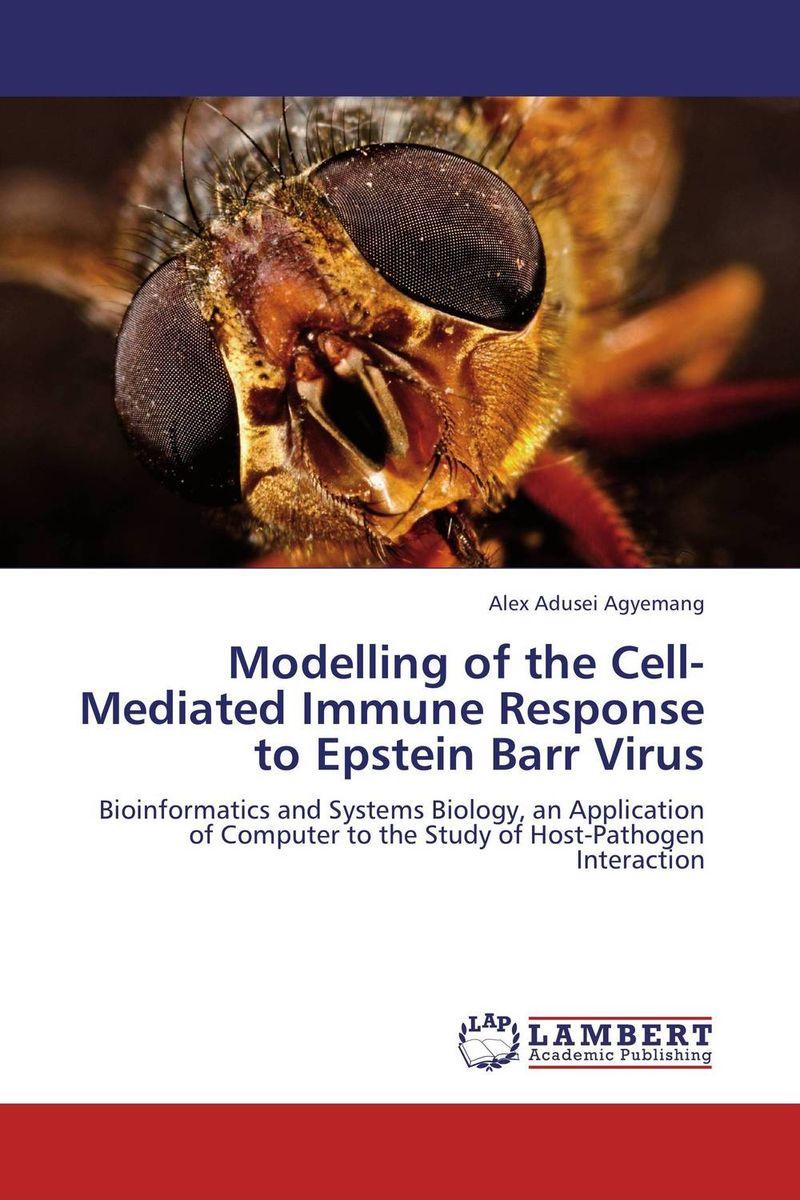 Modelling of the Cell-Mediated Immune Response to Epstein Barr Virus immune response to virus