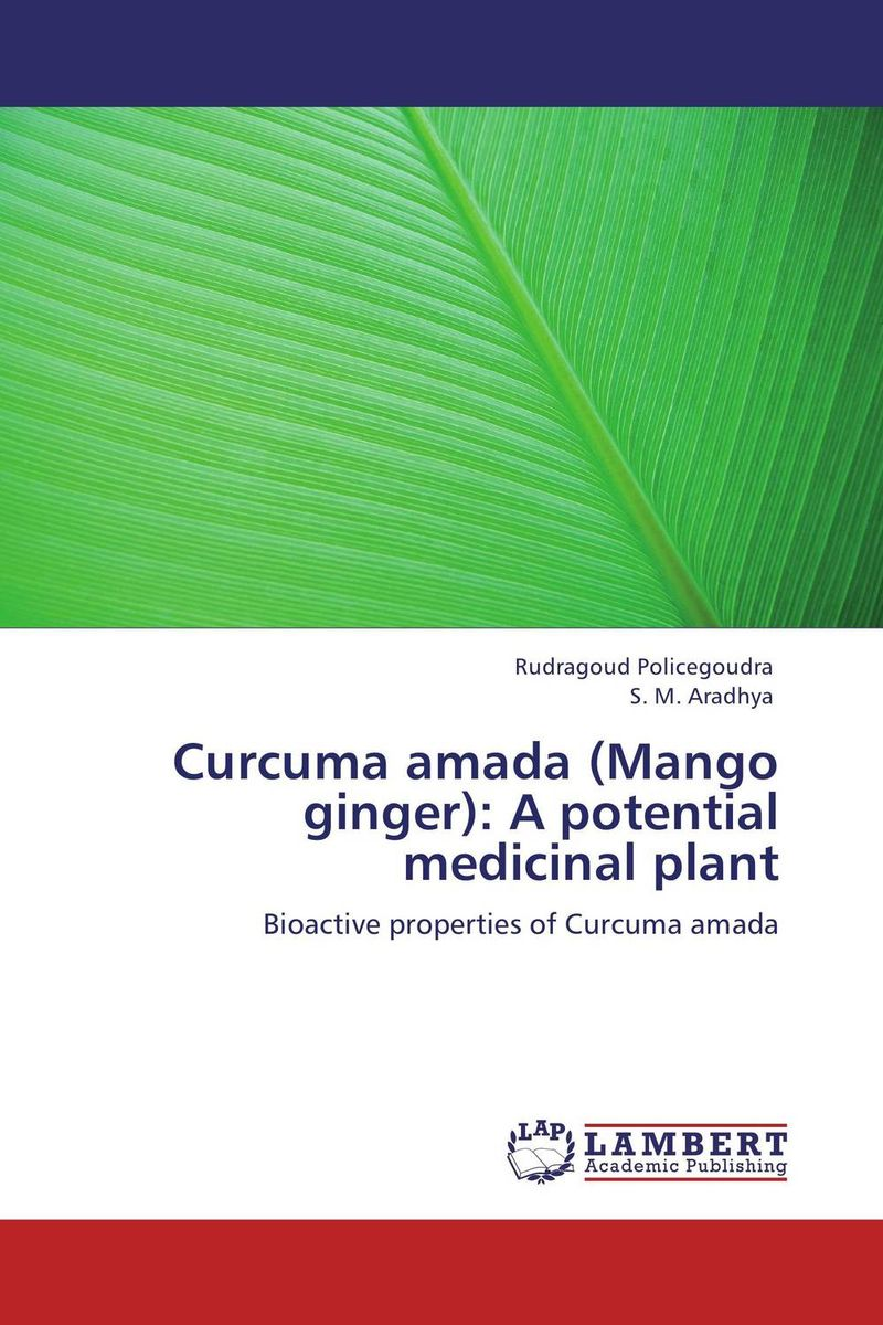 Curcuma amada (Mango ginger): A potential medicinal plant functional capacity of mango leave extracts