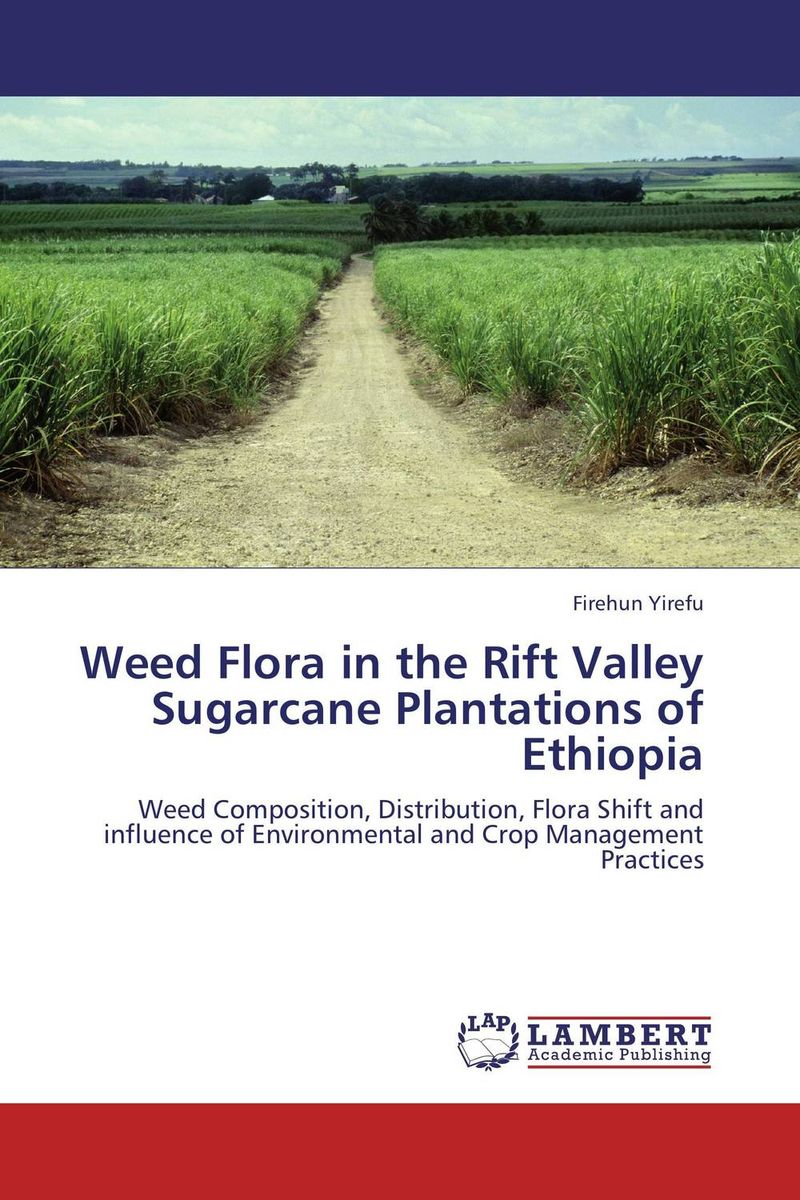 Weed Flora in the Rift Valley Sugarcane Plantations of Ethiopia on the distribution of information structures and focal points