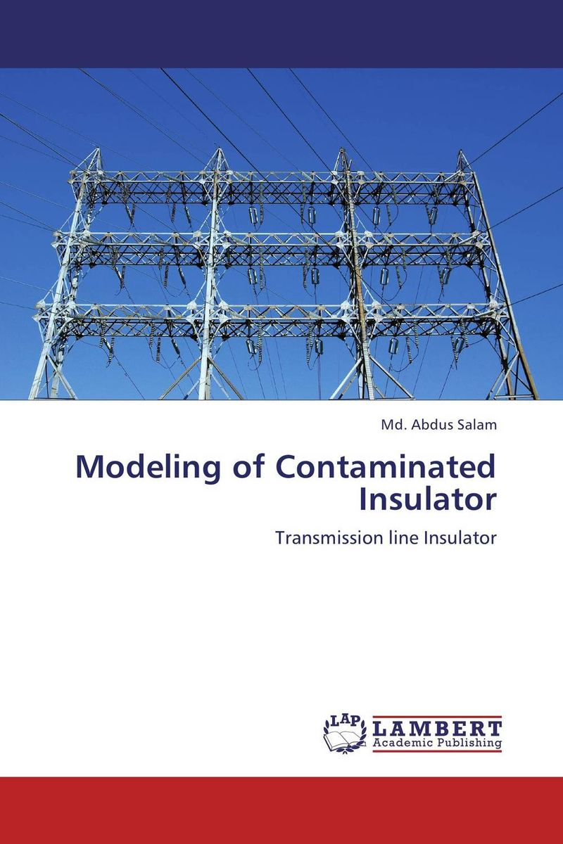 Modeling of Contaminated Insulator optimization modeling and mathematical analysis