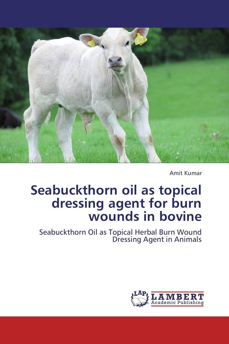 Seabuckthorn oil as topical dressing agent for burn wounds in bovine acticoat burn dressing acticoat burn drs 4x4 in 1 case 48 each