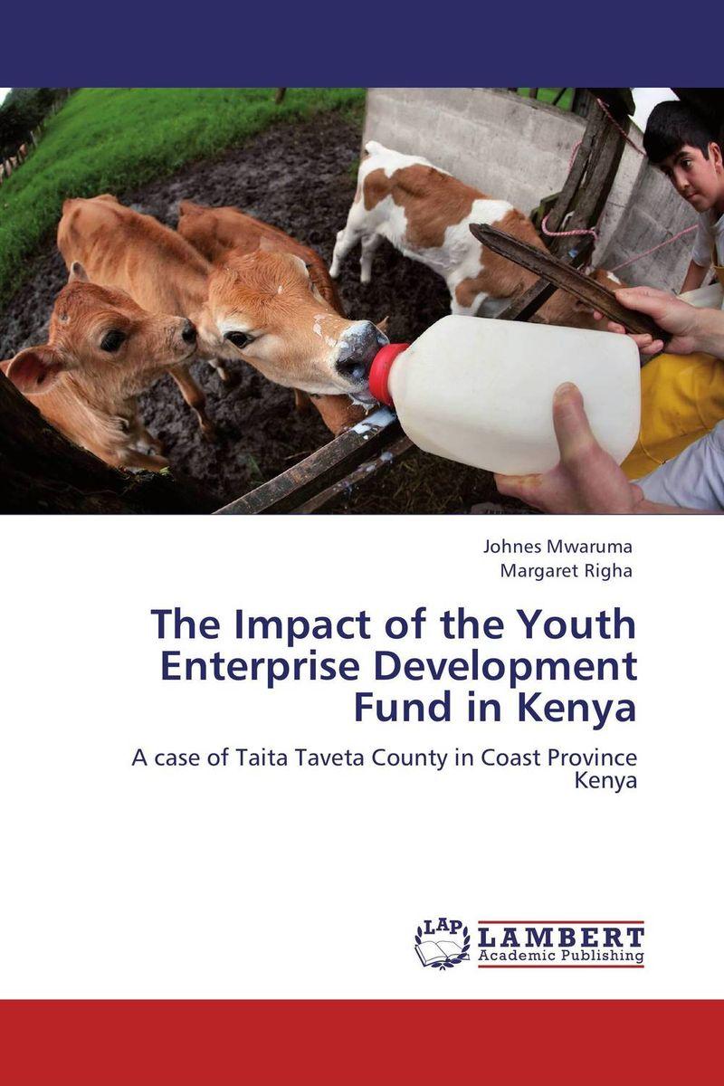 The Impact of the Youth Enterprise Development Fund in Kenya education trust fund etf intervention on the university development