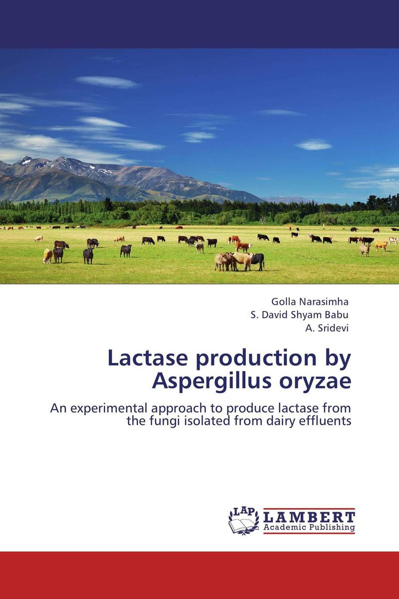 Lactase production by Aspergillus oryzae snapback caps 2015 snapback mens hats and caps