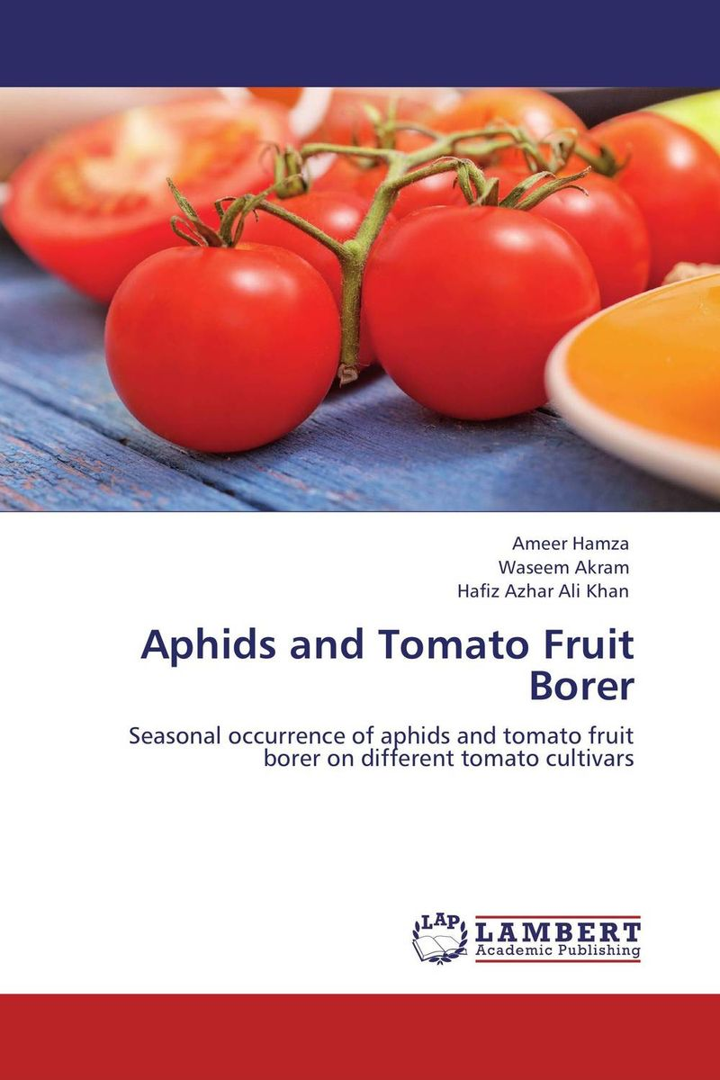 Aphids and Tomato Fruit Borer resistance study in tomato