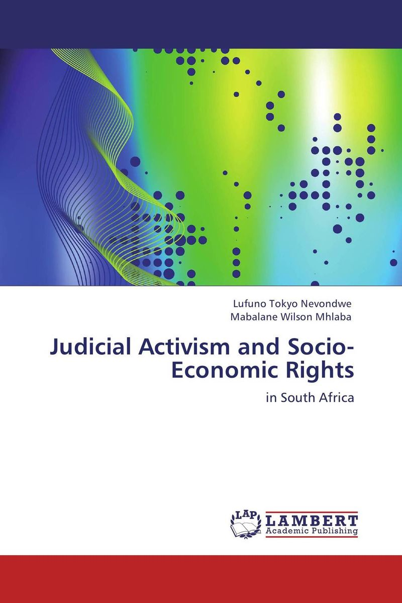 Judicial Activism and Socio-Economic Rights the rules do not apply page 2