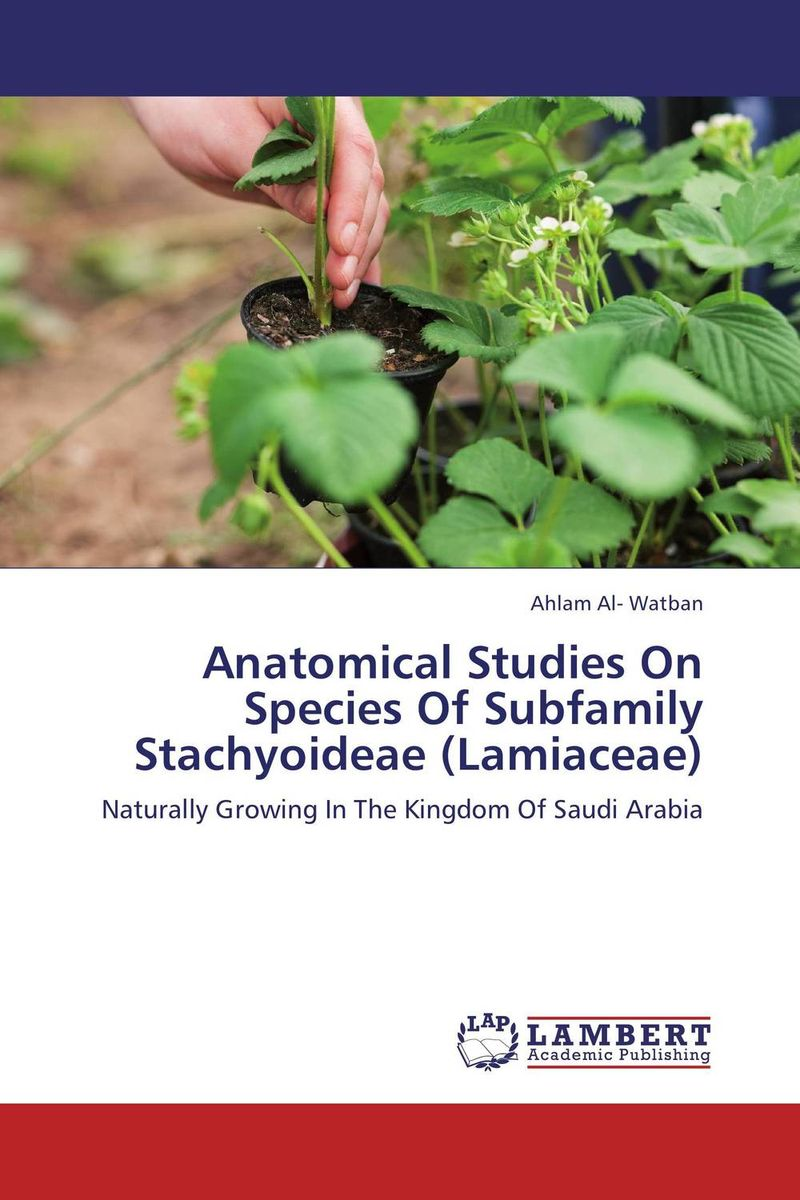 Anatomical Studies On Species Of Subfamily Stachyoideae (Lamiaceae) anatomical studies on species of subfamily stachyoideae lamiaceae