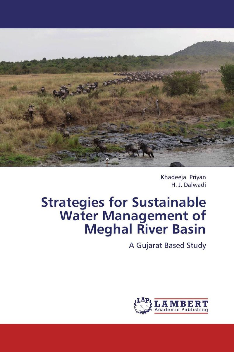 Strategies for Sustainable Water Management of Meghal River Basin planning for development of water resources of maner river