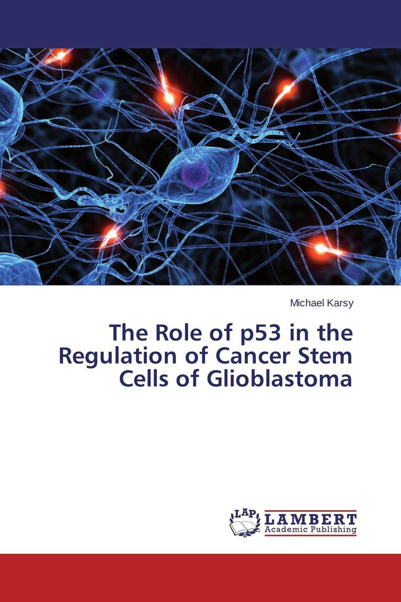 The Role of p53 in the Regulation of Cancer Stem Cells of Glioblastoma the role of evaluation as a mechanism for advancing principal practice