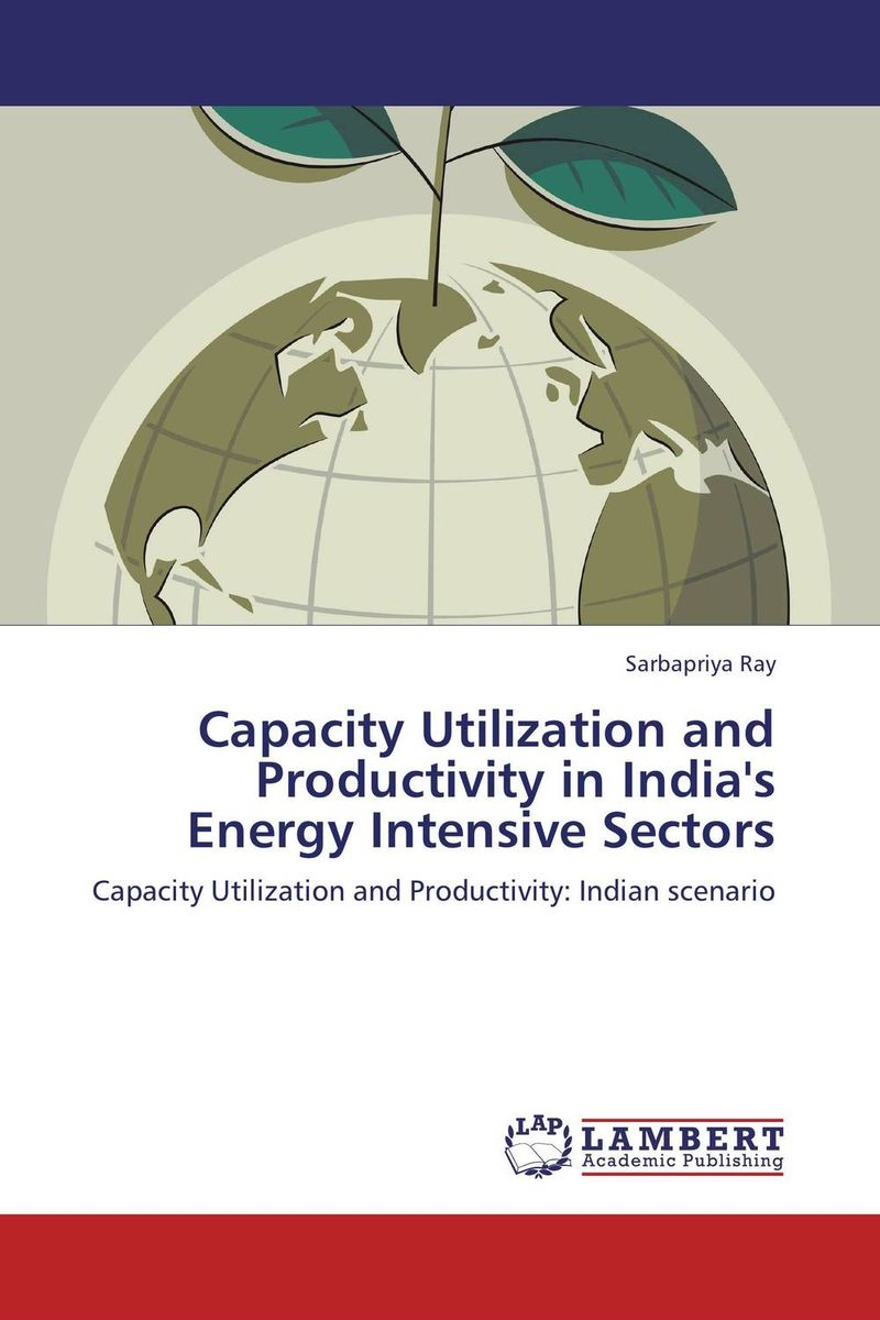 Capacity Utilization and Productivity in India's Energy Intensive Sectors found in brooklyn
