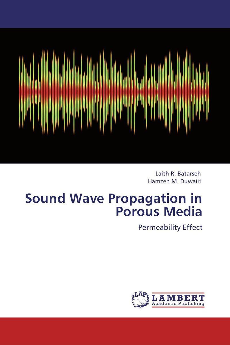 цена на Sound Wave Propagation in Porous Media