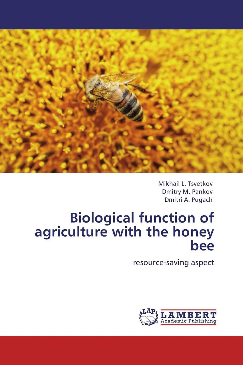 Biological function of agriculture with the honey bee high quality 100% natural pure sweet honey bee honey