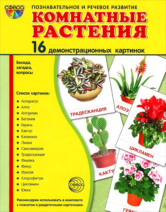 Комнатные растения (набор из 16 демонстрационных картинок)