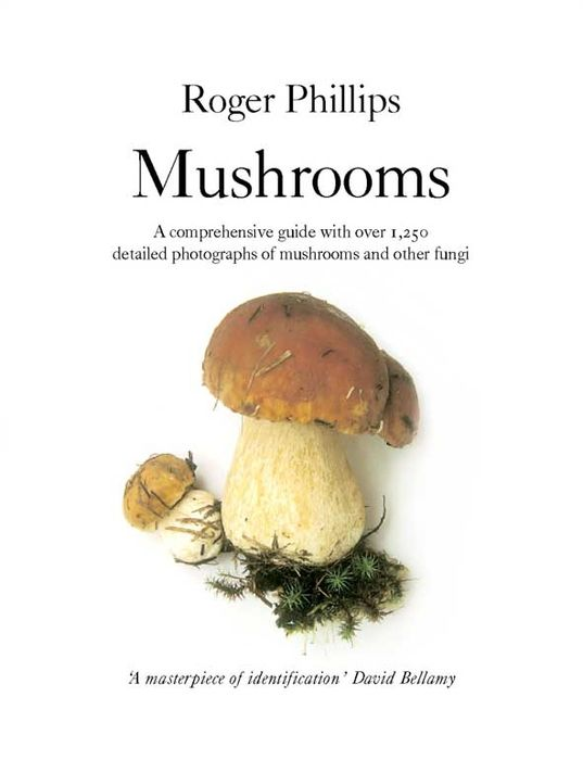 Mushrooms the american spectrum encyclopedia the new illustrated home reference guide