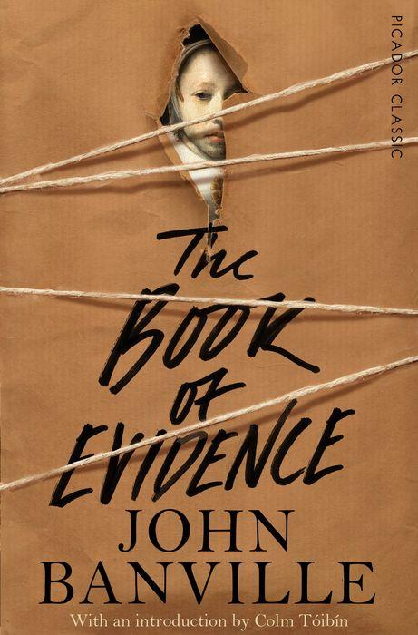 The Book of Evidence soemarso slamet rahardjo stock market crisis evidence of speculative behaviour
