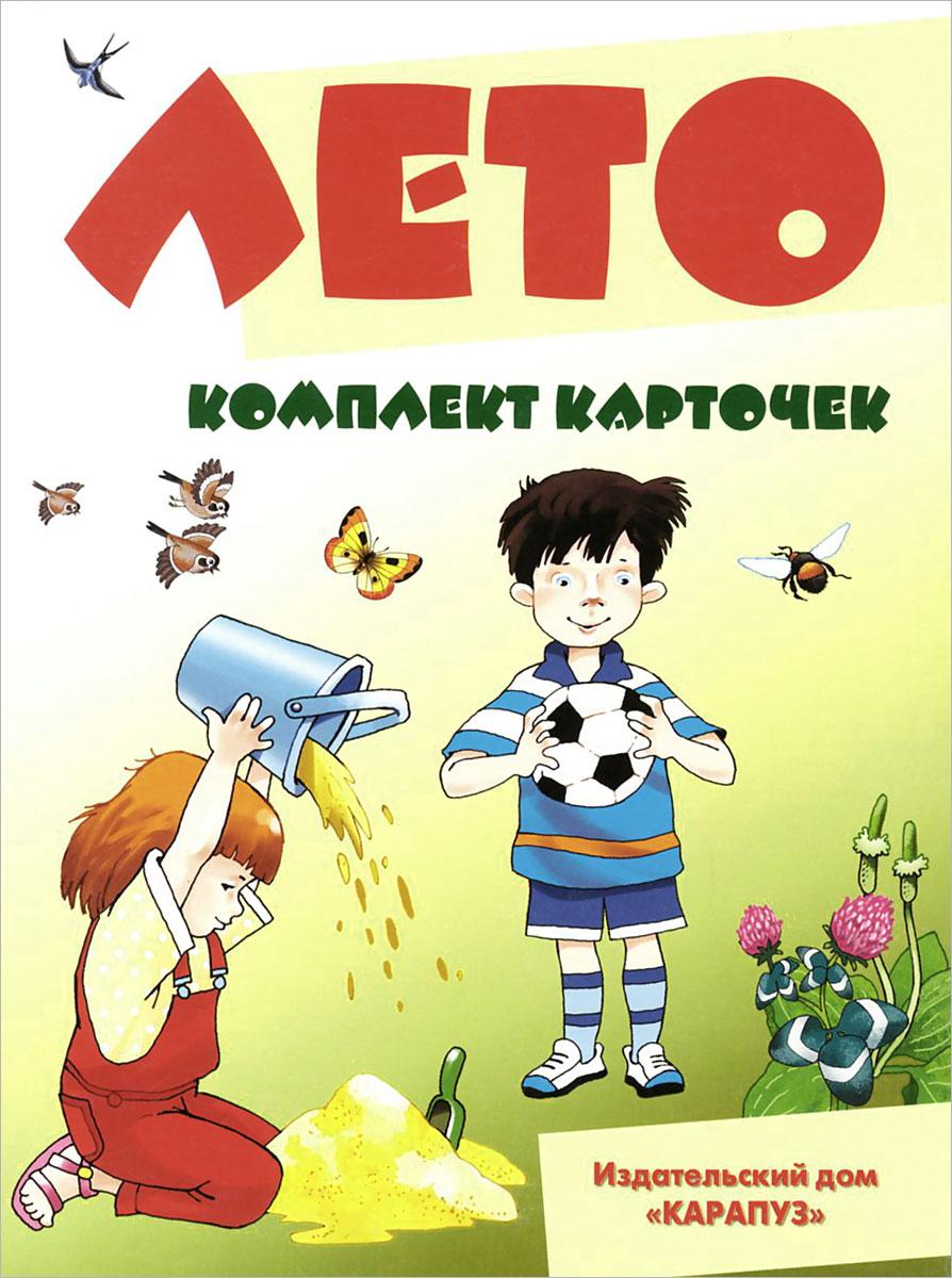 В. А. Шипунова Лето (набор из 12 карточек) художественные книги росмэн рассказы о природе оранжевое горлышко